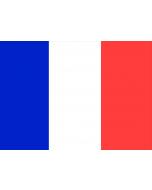 France 12 X 9 Courtesy Flag Polyester