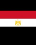 Egypt Courtesy Flag