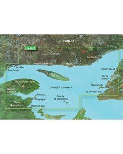 Garmin BlueChart g3 Vision - Les Mechins-St. George's Bay (VCA007R)