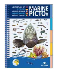 Marine PICTOLIFE - Mediterranean Sea