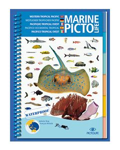 Marine PICTOLIFE - Western Tropical Pacific