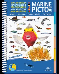 Marine PICTOLIFE - Macronesia