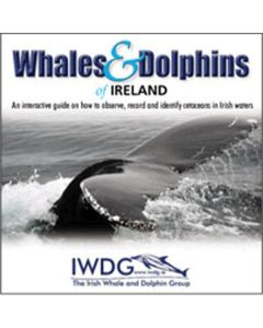Whales and Dolphins of Ireland DVD