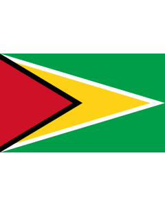 Guyana Courtesy Flag