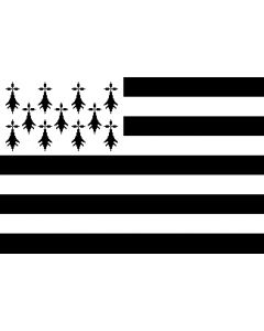 Breton 12 X 9 Courtesy Flag Polyester