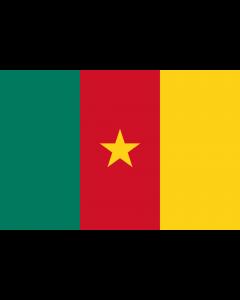 Cameroon Courtesy Flag