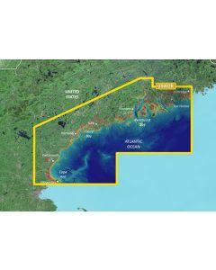 Garmin BlueChart g3 Vision - South Maine (VUS002R)